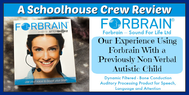 Forbrain, language difficulties, auditory processing disorder, bone conduction headset