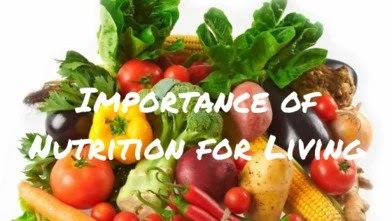 About nutrition for living