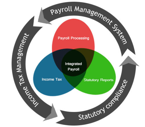 importance of payroll system