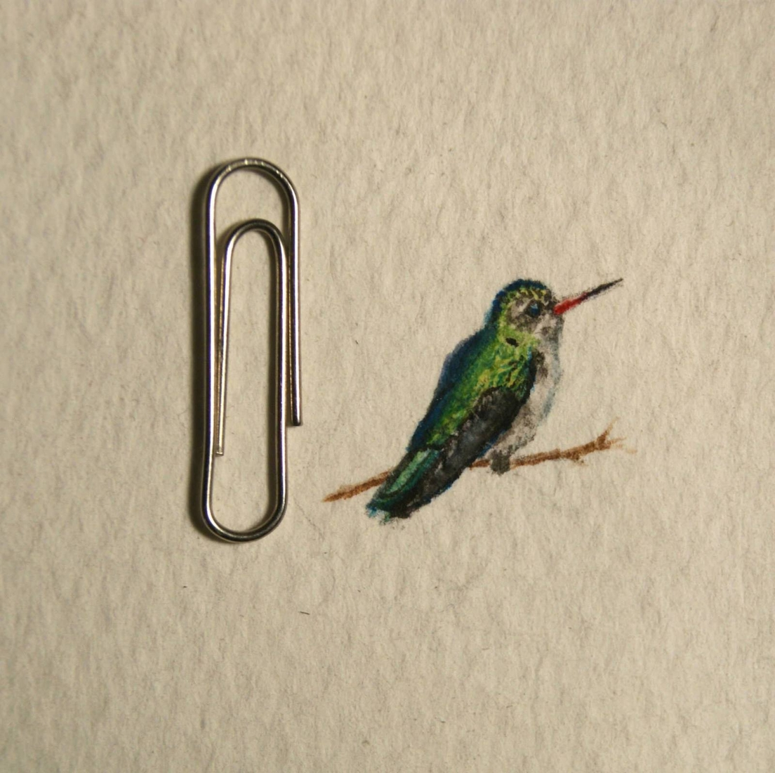 17-Bird-Guillermo-Méndez-Mr-Luigi-Miniature-Drawings-and-Watercolor-Paintings-www-designstack-co