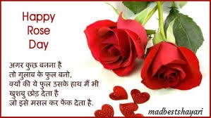 rose day image hd
