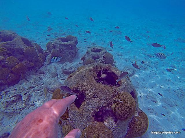 Mergulho na praia de Porto Marie, Curaçao