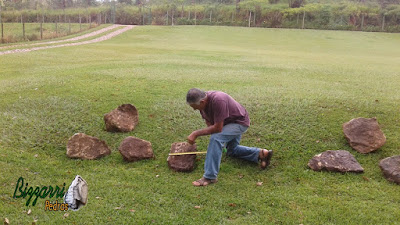 Pedras ornamentais, tipo pedra moledo bege escuro, sendo pedra tipo chapa com tamanho variado de 30 x 30 cm e espessura de 10 a 15 cm.
