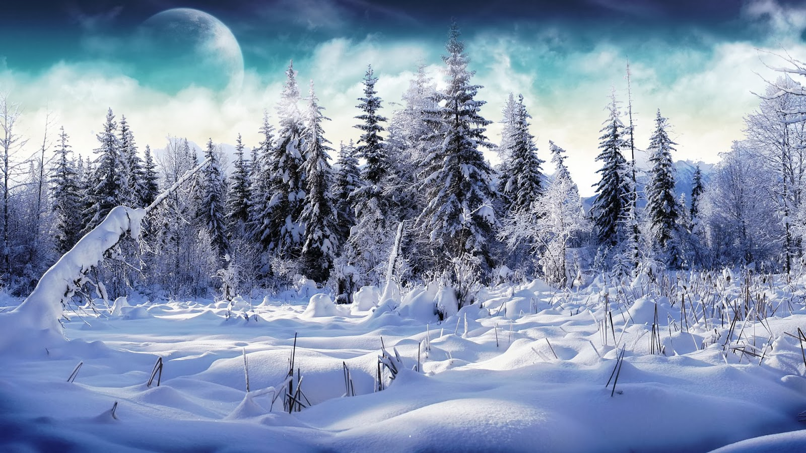 Snow Fall Winter HD Wallpapers