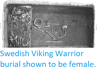 http://sciencythoughts.blogspot.co.uk/2017/09/swedish-viking-warrior-burrial-shown-to.html