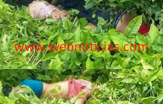 Identifican a cuatro de los ejecutados en Uxpanapa Veracruz