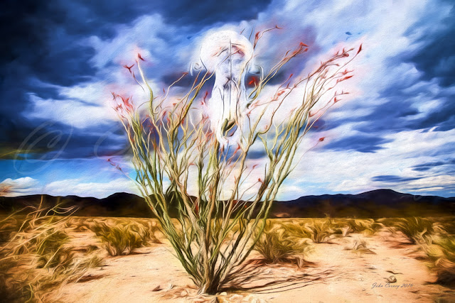 Peyote Vision in the Desert after Georgia O'Keeffe