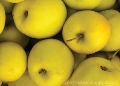 Apple_Stem_Cell_Extract_bahan_sumber_tumbuh_tumbuhan_semulajadi_dalam_Youth_Skincare_Shaklee