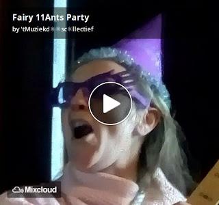 https://www.mixcloud.com/straatsalaat/fairy-11ants-party/