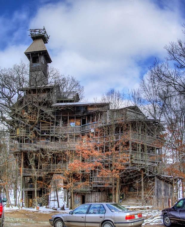 Rumah Pohon Terbesar Di Dunia 7
