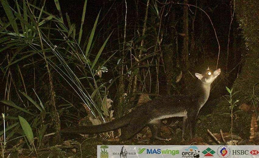 Malaysian Nature Society Kuching Branch: Make a date with