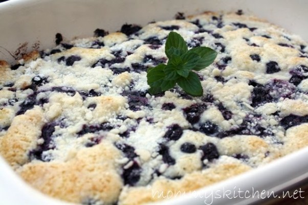 Blueberry Muffin Snack Cake