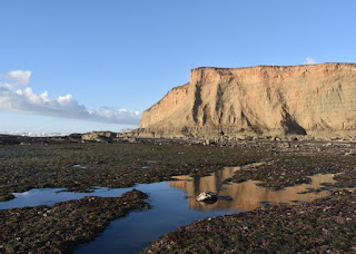 Cliff reflected in a tide pool at Mavericks Beach, Princeton-by-the-Sea, California