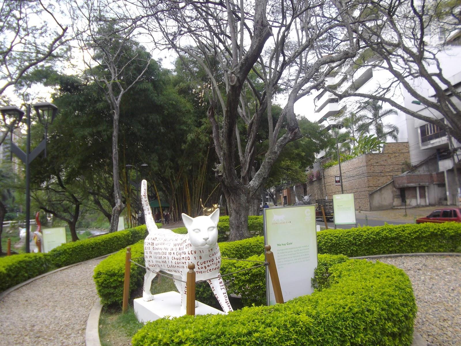 Les aventures de michelle las aventuras de michelle en for Barrio el jardin cali colombia