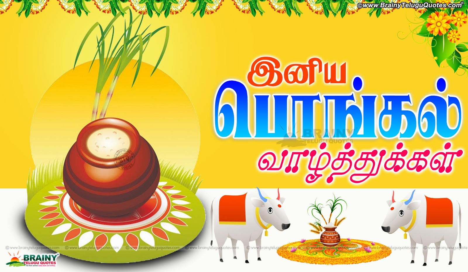 Tamil Makara Sankranti Dina Wishes Greetings Quotes Messages With Hd