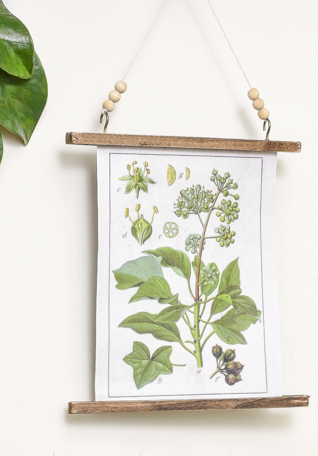 20 free botanical print easy diy wall hanging
