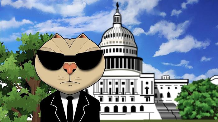 Keratocat at the Capitol: National Keratoconus Day