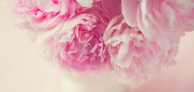 bouquet-pivoine-rose-romantique