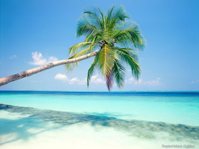 Atrações do Caribe