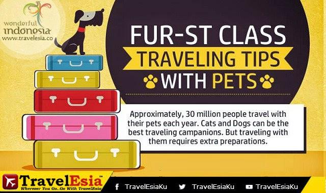 tips berwisata bersama hewan