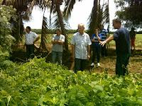 agricultura-conservacion-manati
