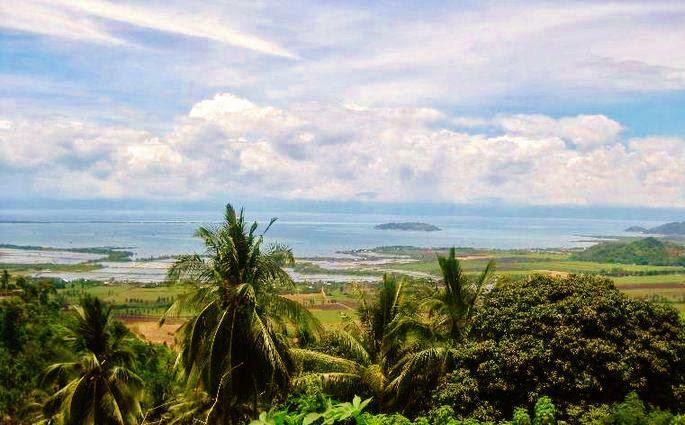 Apo-island