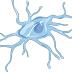 Pela primeira vez, pesquisadores flagram a ação da micróglia