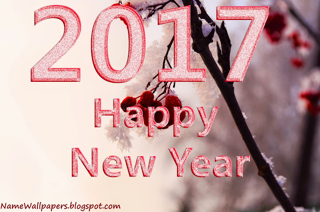 Happy New Year 2017 Wallpapers Images Download