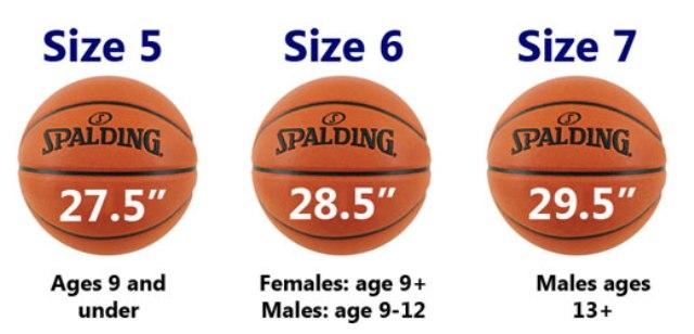 Ukuran Serta Berat Bola Basket Standar Nasional Dan Internasional