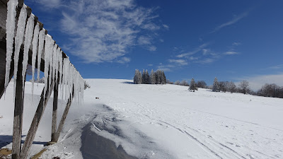 Stall mit Eiszapfen zwischen Röti und Weissenstein