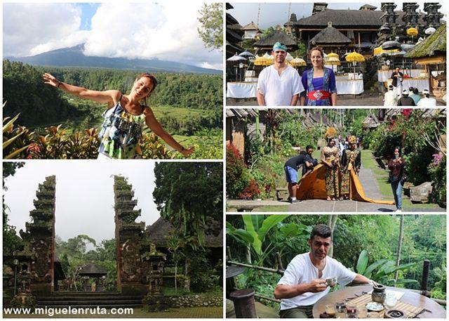 Bali-excursiones-Ubud