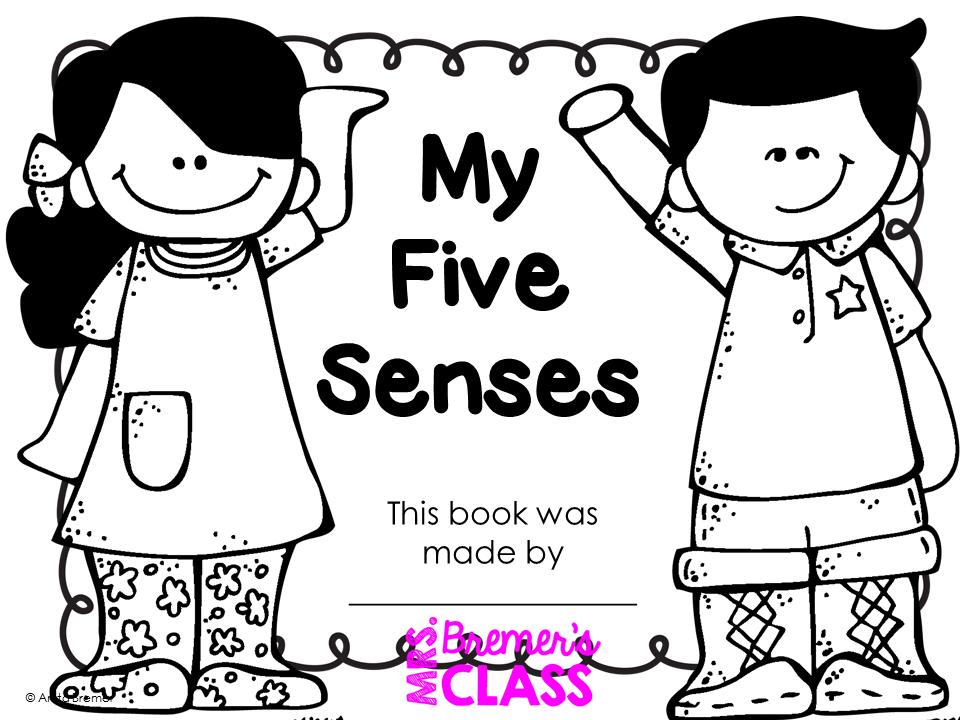 Mrs. Bremer's Class: The Five Senses