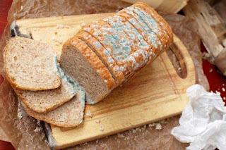 Roti berjamur