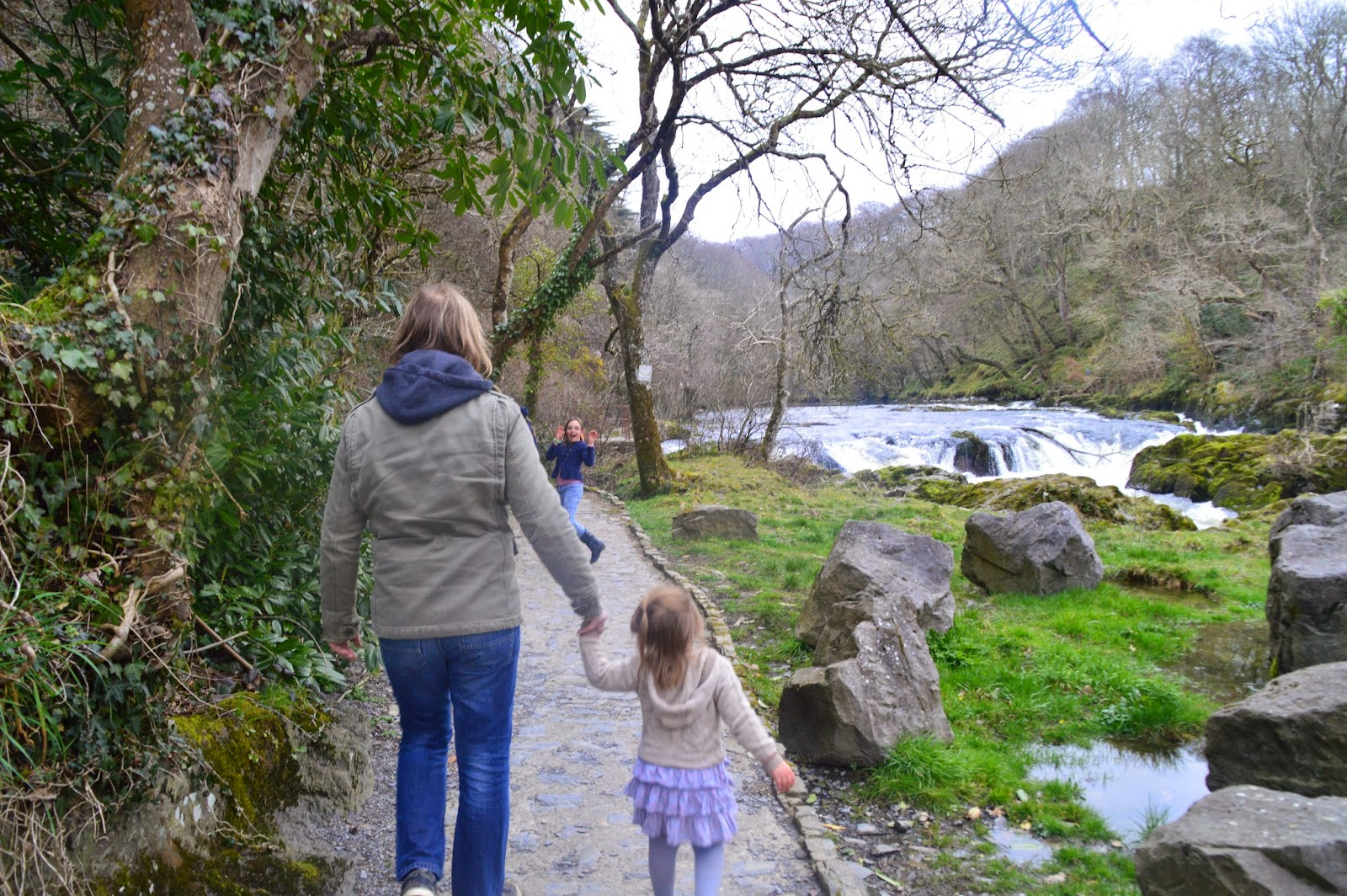 , Cenarth Falls, Ceredigion for Mother's Day