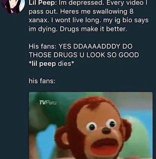 Lil Pepe Memes