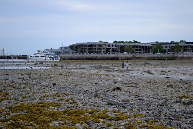 Остров Бар, штат Мэн (Bar Island, ME)