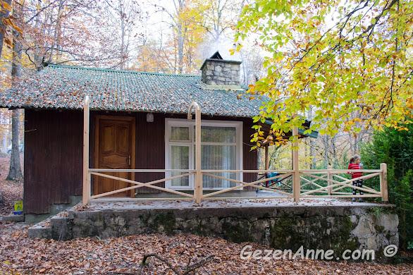 Yedigöller'de konaklanabilecek bungalov dağ evleri