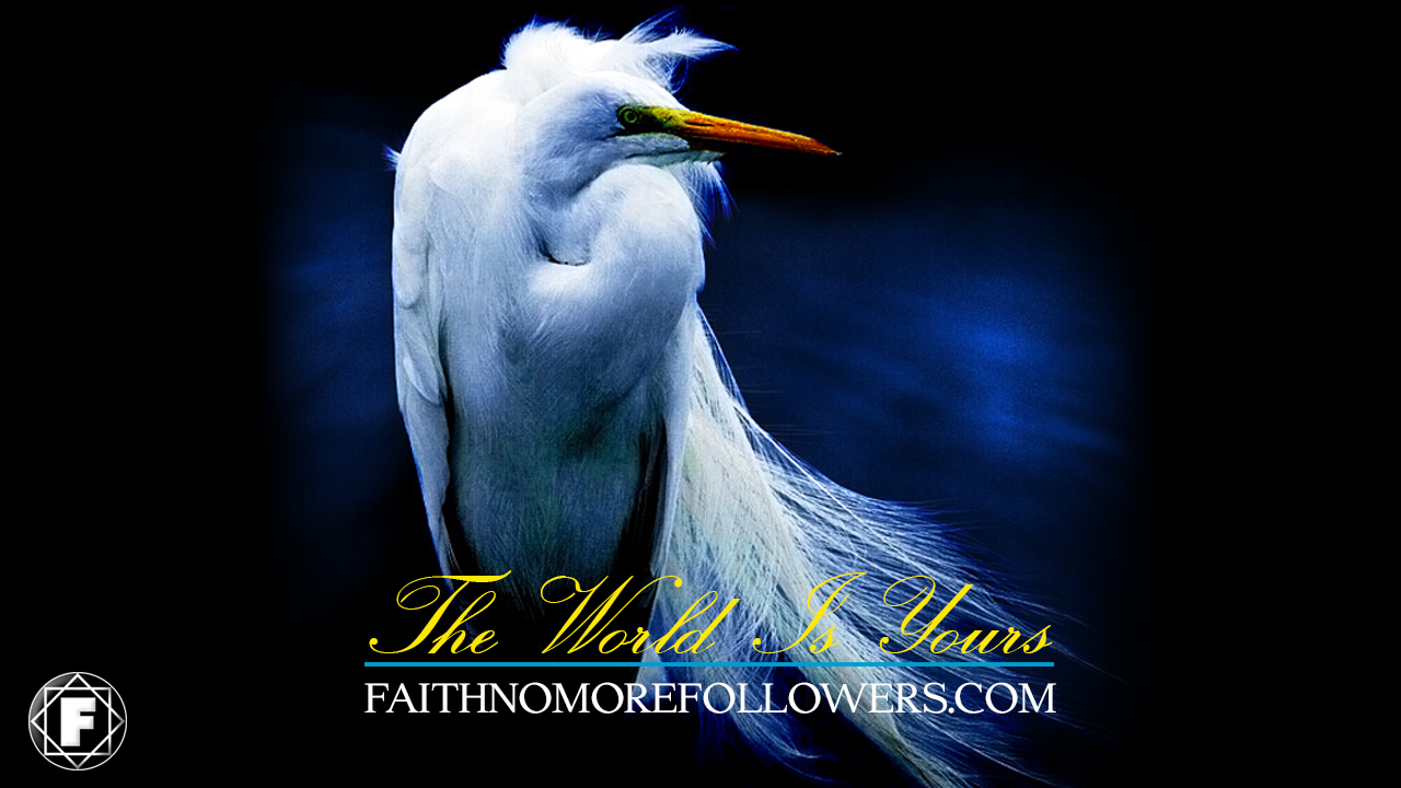 Faith No More Followers: FAITH NO MORE RARITIES | #7 The World Is ...