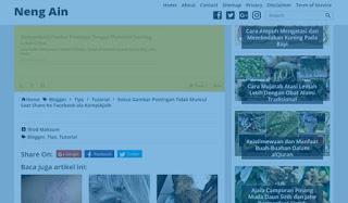 Kenapa Teks Postingan Hilang Saat Browser Pengunjung Menggunakan Adblock