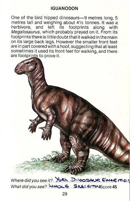 Animals & Dinosaurs Chap Mei Dinosaurs Bright Luster