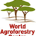 Board of Trustees Wanted at World Agroforestry Centre