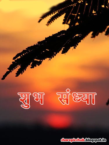 Good Evening Wallpaper With Quotes In Hindi Shubh Sandhya Wishes Greetings In Hindi Share Pics Hub