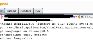 Using HEAD to optimize Time Based SQL Injection ~ Random