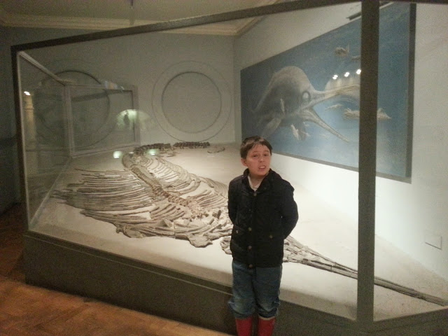Boy with Ichthyosaur Fossil at Bristol Museum