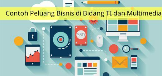 Contoh Peluang Bisnis di Bidang TI dan Multimedia