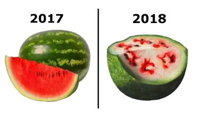Transformace Zelených melounů