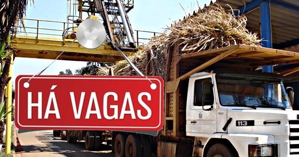 0a50c4068db GRUPO MORENO ABRE VAGAS PARA MOTORISTA CAT B D E - Brasil do Trecho - Blog  para Caminhoneiros