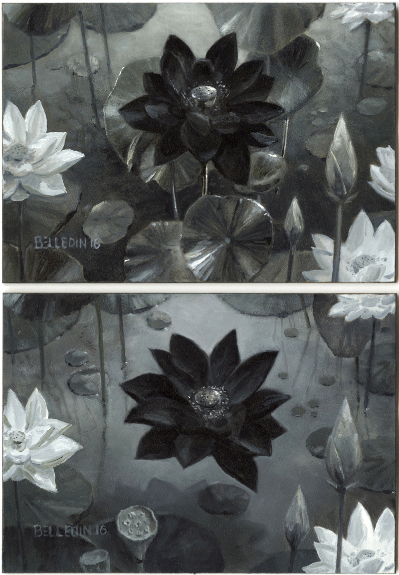 Push And Pull Black Lotus
