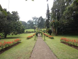 Peradeniya Royal Botanical Gardens
