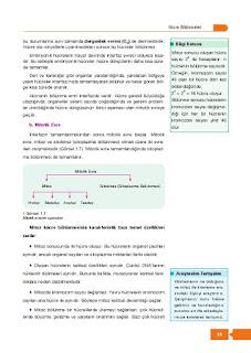 10. Sınıf Biyoloji Ders Kitabı Cevapları Berkay Yayınları Sayfa 19